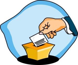 1350276397_8177_vote02